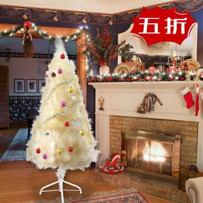 圣诞树--香槟松--1.5m