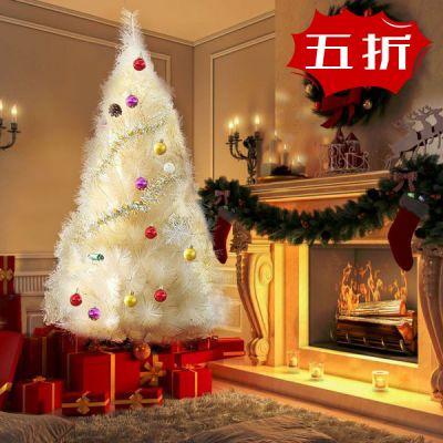 圣诞树--香槟松--1.8m